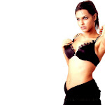 North Indian Actress Neha Dhupia Wallpapers,profile,biography,filmography